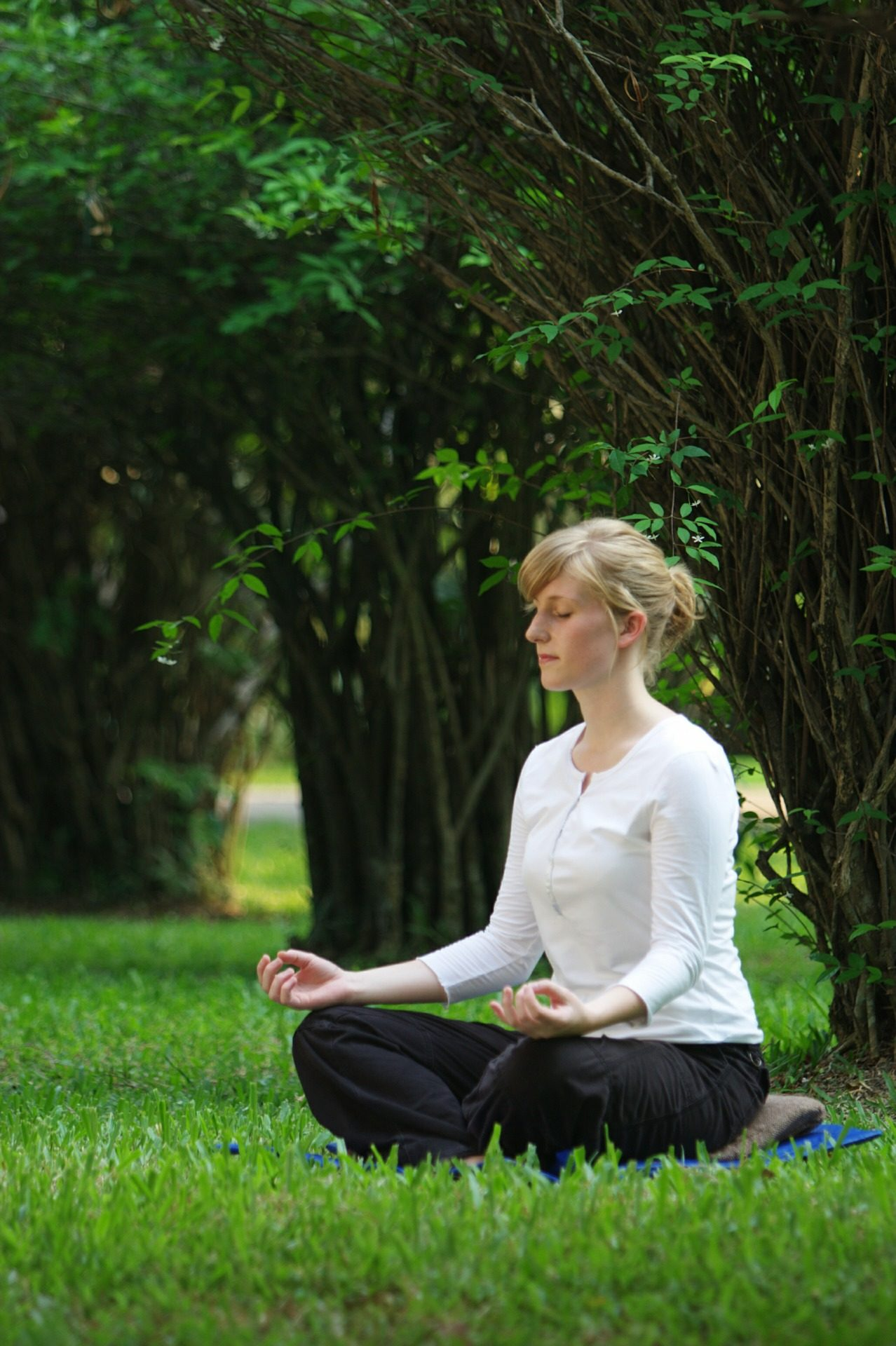 aprende meditar