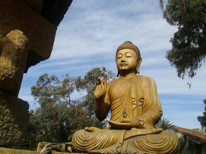 Buda Hacienda